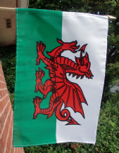 HAND WAVING FLAG - Wales